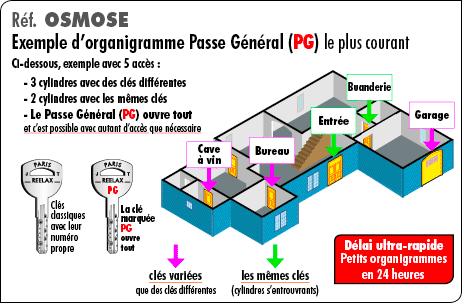 organigramme-classique